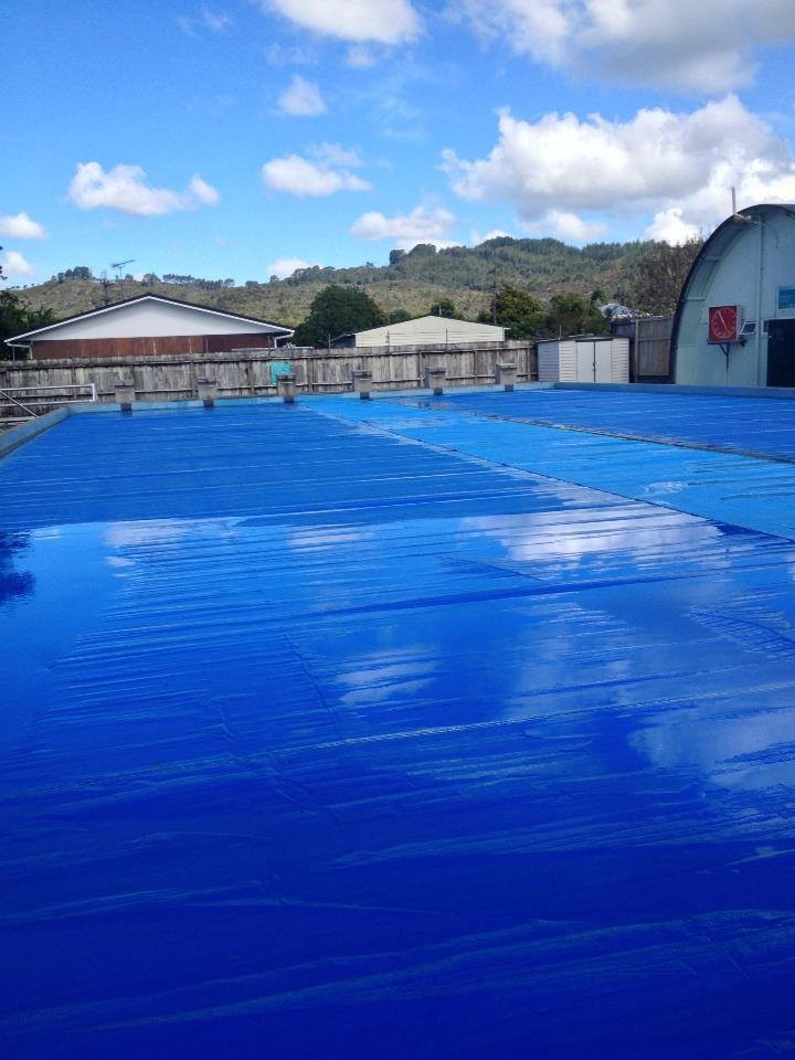 Mercury Bay Public Swimming Pool In Whitianga Whitianga Sport Recreation
