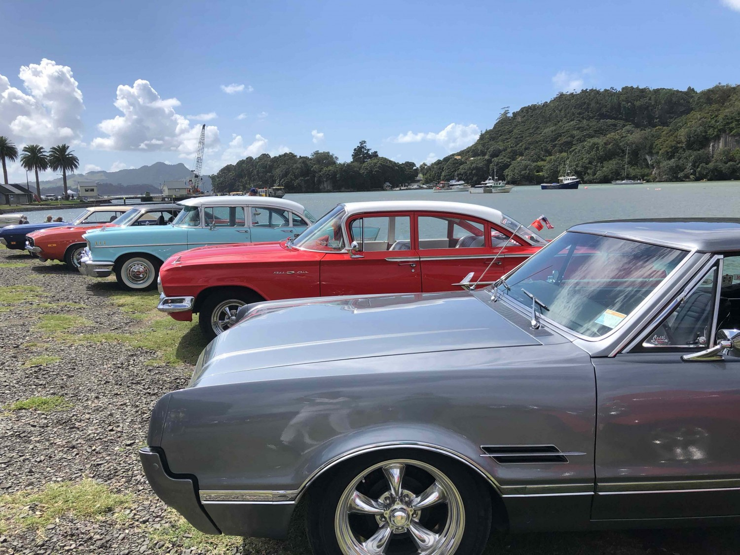 Classic cars parked at Whitianga waterfront