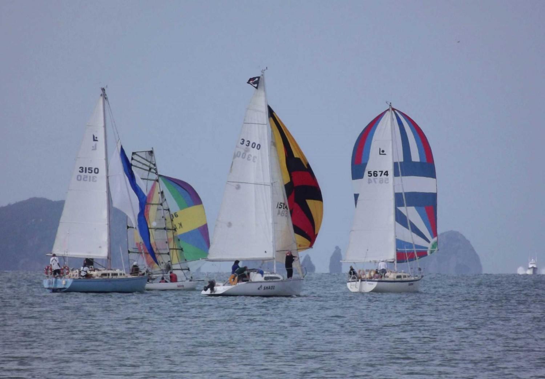 Mercury Bay Boating Club new years day race