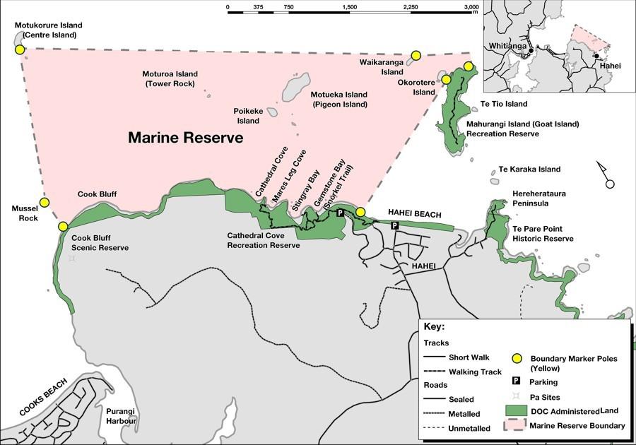 Friends of Te WhanganuiAHei Marine Reserve Hahei Environmental