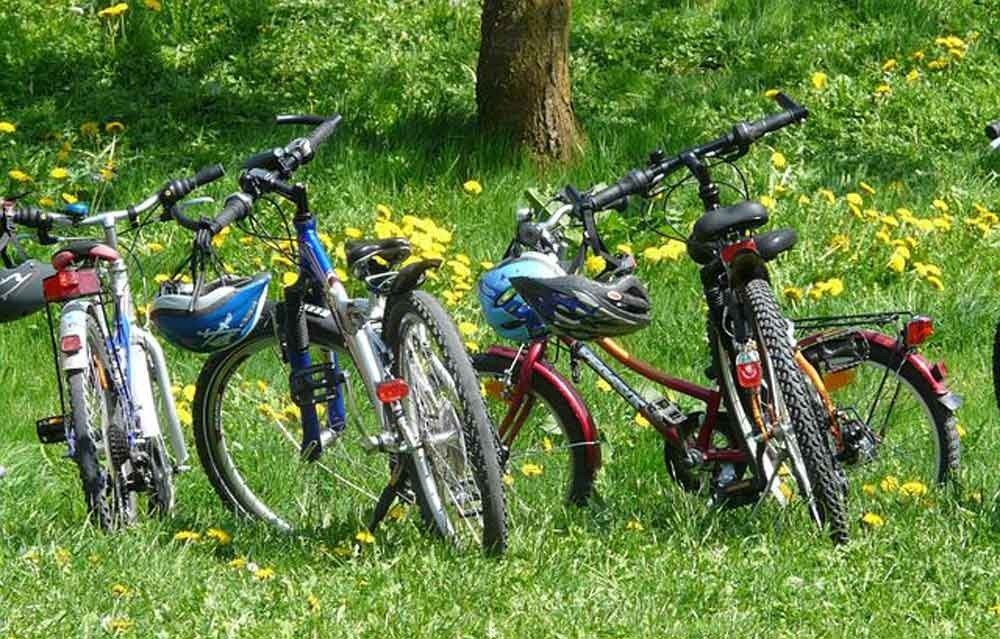 Bicycles on grass