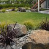 Rocks and flax in garden