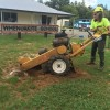 Man with yellow stump grinder