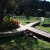 Whitianga Bike Park Childrens Trail Whitianga