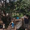 Kuaotunu Rudolf Steiner Kindergarten garden and yard