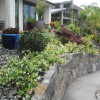Chops Landscaping Design and Maintenance