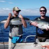 Two mean holding kingfish