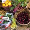 local produce Coroglen Farmers Market Coromandel Peninsula