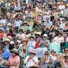 Whitianga Summer Concert crowd enjoying the day