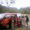 Pickup from Ferry Landing across from Whitianga