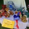 Gorgeous gifts Whitianga Craft Market
