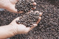 Coffee Beans by Coffee Lala Whitianga
