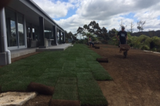 grass seed or lawn laying .png