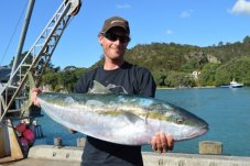 trailer boat tournament fishing competition Whitianga