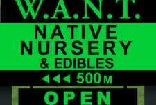 W.A.N.T Native Nursery Kuaotunu