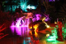 Colourful pink and green night lights of The Lost Springs