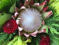 fresh flowers Coroglen Farmers Market Coromandel Peninsula