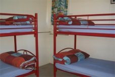 Bunk beds backpackers Whitianga