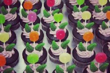 Lollypop flower cupcakes at Jandals Cafe, Whitianga