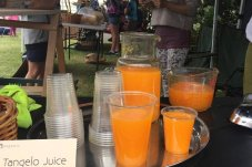 fresh juice Coroglen Farmers Market Coromandel Peninsula.jpg