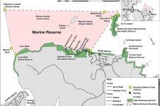 Te Whanganui-A-Hei Marine Reserve Chart