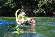 Snorkelling at Te Whanganui-A-Hei Marine Reserve