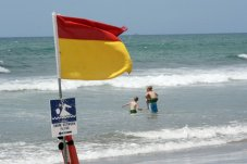 Hotwater beach flags near whitianga