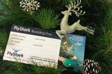 Special FlyStark boarding pass