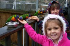 Feeding the birds at Mill Creek Park