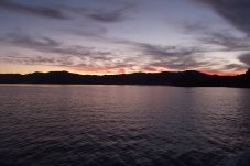 Fishing NZ Adventures Whitianga sunset charter views