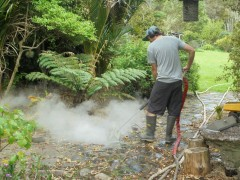 Steamteam - Chemical Free Weed Control & Property Cleaning