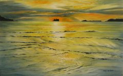 Whitianga Art Group Summer Exhibition