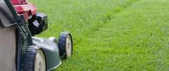 Lawns being mowed