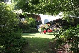 Gorgeous garden setting