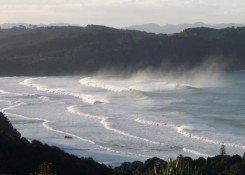Hot water beach near whitianga