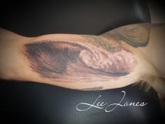 Evolution Tattoo Studio Whitianga NZ