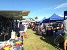 Mercury Bay Emergency Services Summer Festival Taylors Mistake Whitianga