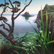 November Morning @ Bread & Butter Gallery Whitianga