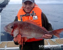 Snapper Fishing Charters Whitianga NZ