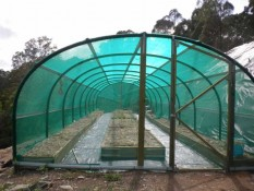 Example vegetable shade house