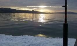 Fishing NZ Adventures Whitianga charter boat Mercury Bay Coromandel Peninsula