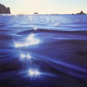 Ocean Dazzle Jacqueline Elley Bread and Butter Gallery Whitianga