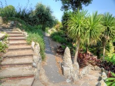 Example paved areas with steps and planting
