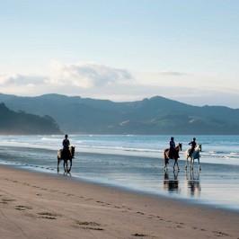 Horse riding on Matarangi Beach