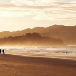 Couple walking dog on Matarangi Beach