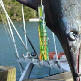 Mercury Bay Game Fishing Club big catch whitianga