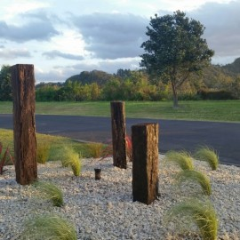 Grasses and stones with timber beams