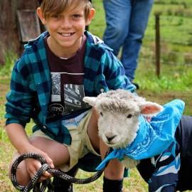 Boy with pet lamb