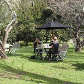 Couple dining outdoors under umbrella