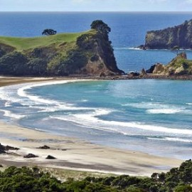 Regular flights from Whitianga to Great Barrier Island and return by Sunair